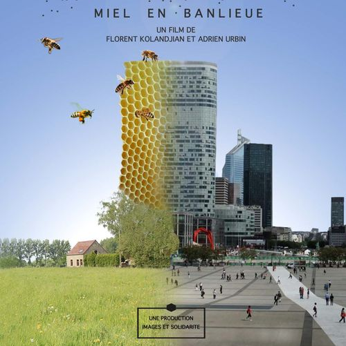 MIEL EN BANLIEUE - PROJECTION